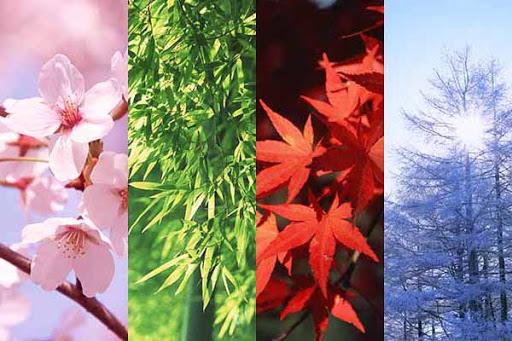 四季折々の景色と湯とカジノx